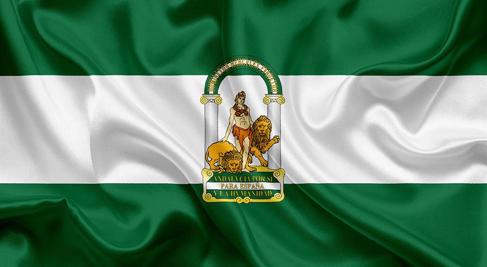¿Son altos cargos los directivos de las sociedades mercantiles de capital público de Andalucía o son labores comunes?¿qué son?